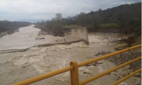 Καιρός: Προβλήματα στα Τρίκαλα - Έσπασαν τα αναχώματα του Πηνειού (vid)