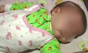 Απίστευτο! Κατοικίδιο - ήρωας σώζει νεογέννητο από βέβαιο θάνατο!