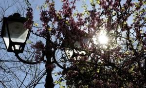 Καιρός - 25η Μαρτίου: «Μύρισε» καλοκαιράκι - Με ήλιο και ζέστη η παρέλαση