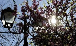 Weather forecast on Saturday (25/03/2017): Bright and sunny