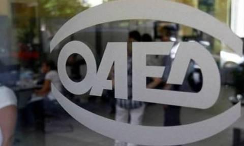 ΟΑΕΔ: Ξεκινά τη Δευτέρα νέο πρόγραμμα για 10.000 προσλήψεις - Ποιους αφορά