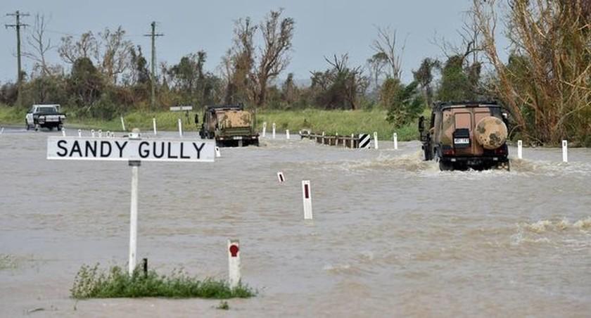 Τρόμος στην Αυστραλία: Ο τυφώνας Ντέμπι έβγαλε στη στεριά... καρχαρία! (pics+vid)