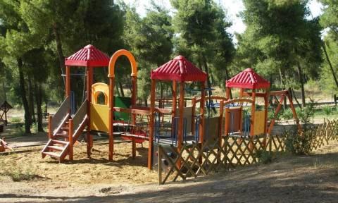ΟΑΕΔ – Δωρεάν παιδικές κατασκηνώσεις: Κάντε κλικ ΕΔΩ για να κάνετε αίτηση