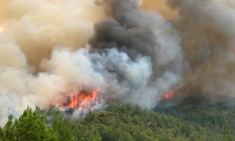 Μεγάλη φωτιά σε εξέλιξη στο Κιάτο
