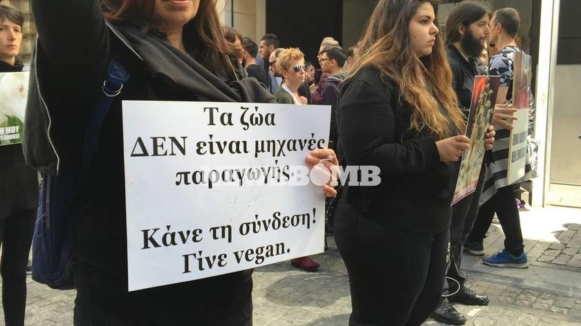 Ακτιβιστές χορτοφάγοι διαμαρτυρήθηκαν στην Ερμού κατά της σφαγής ζώων (pics&vid)