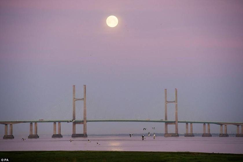 Μοναδικές φωτογραφίες: Το «ροζ φεγγάρι» φώτισε το νυχτερινό ουρανό