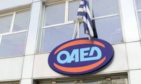 ΟΑΕΔ: Έρχεται πρόγραμμα για 10.500 θέσεις εργασίας σε ΟΤΑ και Δημόσιο