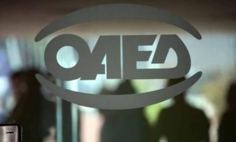ΟΑΕΔ: Πότε ανακοινώνεται το πρόγραμμα για τις 10.500 θέσεις εργασίας σε ΟΤΑ και Δημόσιο
