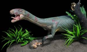 Ανακάλυψαν «ξάδερφο» των δεινοσαύρων που έμοιαζε με κροκόδειλο