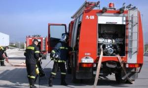 Συναγερμός στην Πρέβεζα: Μεγάλη φωτιά σε εξέλιξη (pics)