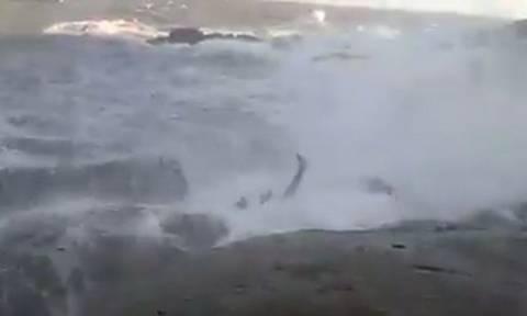 Βίντεο σοκ: Έβγαζαν selfie στα βράχια και τους πήρε η θάλασσα - Ένας νεκρός