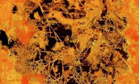 Βρέθηκαν απολιθώματα ηλικίας 2,4 δισεκατομμυρίων ετών στη Νότια Αφρική