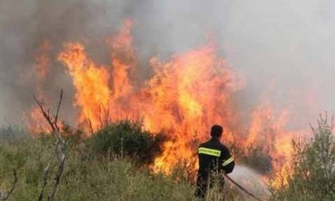 Κρήτη: Ενισχύεται με δύο πυροσβεστικά ελικόπτερα εν όψει της νέας αντιπυρικής περιόδου