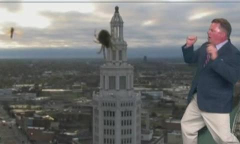 Πανικός: Η επική αντίδραση μετεωρολόγου on air στη θέα μιας…αράχνης! (vid)