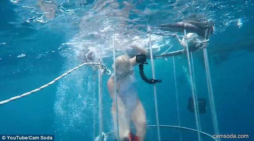 Τρόμος στη θάλασσα: Επίθεση καρχαρία σε γνωστή πορνοστάρ (pics+vid)