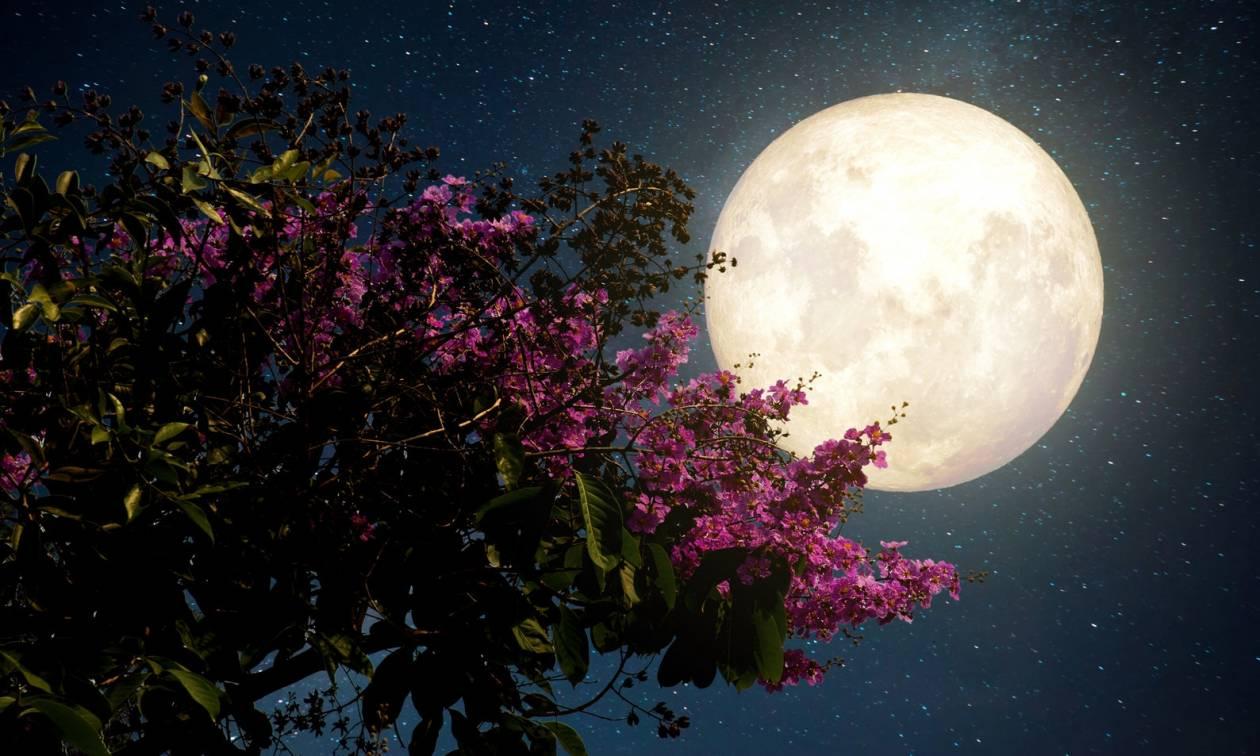 Πανσέληνος Μαΐου: Πότε θα τη δούμε - Γιατί ονομάζεται Φεγγάρι του λουλουδιού