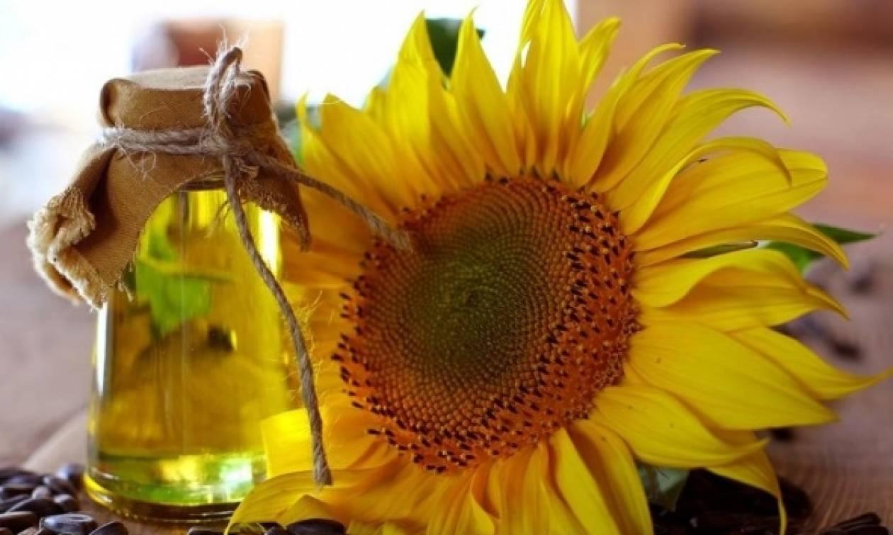 Ανοίγει ο δρόμος για μεταλλαγμένο ηλιέλαιο! «Διάβασαν» το DNA του ηλίανθου