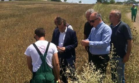 Καιρός: Αυτοψία στις πληγείσες περιοχές της Λάρισας πραγματοποίησε ο Βασίλης Κόκκαλης