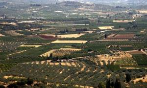 ΕΝΦΙΑ: Εξαιρούνται τα αγροτεμάχια για την επόμενη διετία