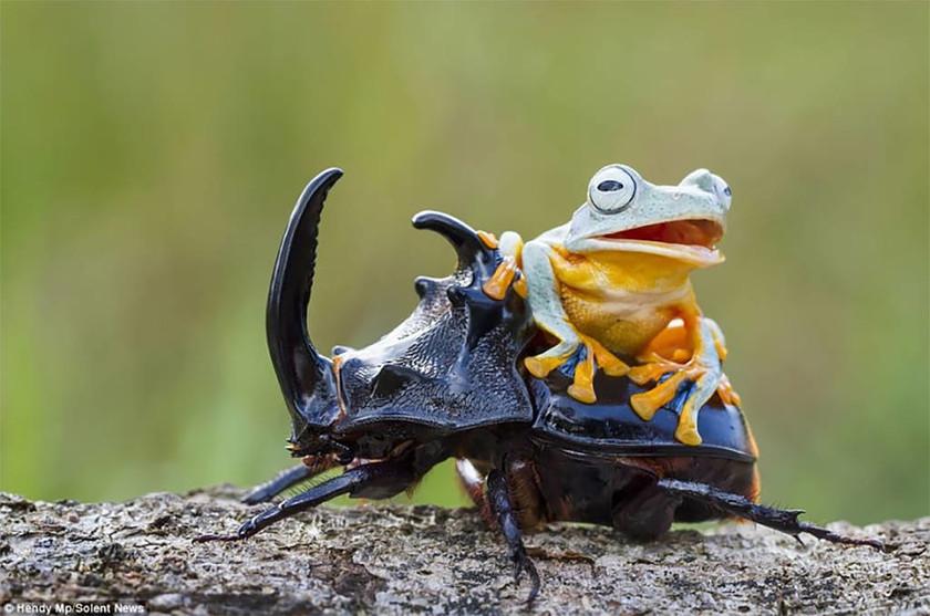 Viral: Οι πιο παράξενες φωτογραφίες της ημέρας