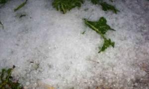 Καιρός: Σοβαρές ζημιές από τη χαλαζόπτωση στην Ρόδο