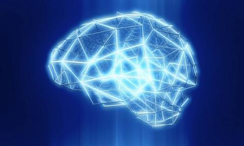 Συγκλονιστική ανακάλυψη ανατρέπει όσα γνωρίζαμε για τον ανθρώπινο εγκέφαλο (Pics)