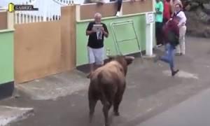 Βίντεο σοκ: Ταύρος επιτέθηκε σε θεατή που βιντεοσκοπούσε την ταυρομαχία!
