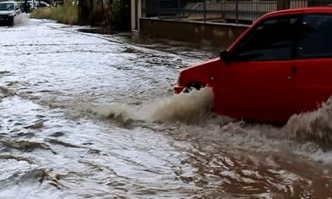 Καιρός: Η καταιγίδα «σάρωσε» τη Λιβαδειά - Καταστροφές σε αγροτικές καλλιέργειες (pics&vids)