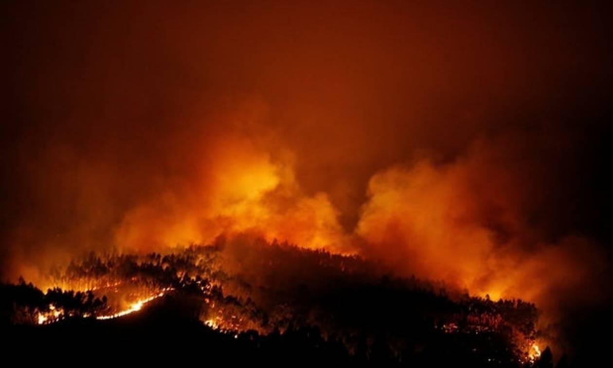 Φονική πυρκαγιά στην Πορτογαλία: Τουλάχιστον 57 οι νεκροί (pics+vids)