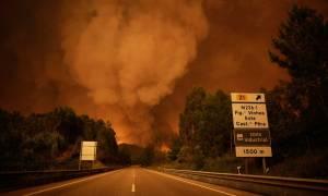 Θρήνος στην Πορτογαλία: Αυξάνεται ραγδαία ο αριθμός των νεκρών από τη δασική πυρκαγιά (Vid)