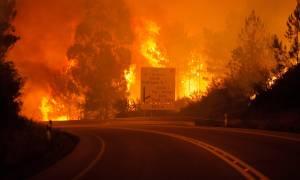 В результате лесного пожара в Португалии погибли 58 человек