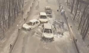 Πυρκαγιά Πορτογαλία: Συγκλονιστικό βίντεο από το σημείο που απανθρακώθηκαν 62 άνθρωποι