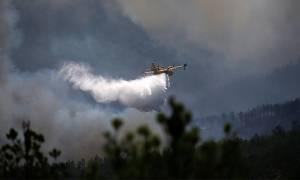 Πορτογαλία: Τραγωδία δίχως τέλος - Συνετρίβη Καναντέρ που επιχειρούσε στην κατάσβεση των πυρκαγιών