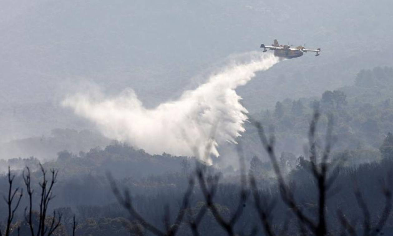 Ανασκεύασαν οι Αρχές της Πορτογαλίας για το Καναντέρ: «Δεν έπεσε κανένα αεροσκάφος»
