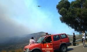 Ο χάρτης πρόβλεψης κινδύνου πυρκαγιάς για την Τετάρτη 21/6 (pic)