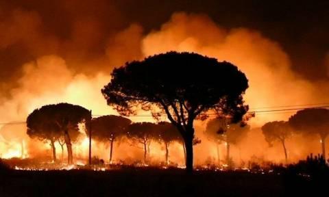 Τρόμος στην Ισπανία από τεράστια δασική πυρκαγιά – Εκατοντάδες εγκαταλείπουν σπίτια και ξενοδοχεία