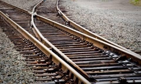 Αλίαρτος: Το τρένο διαμέλισε βοσκό και πρόβατα - Σε κατάσταση σοκ ο μηχανοδηγός που αναζητείται