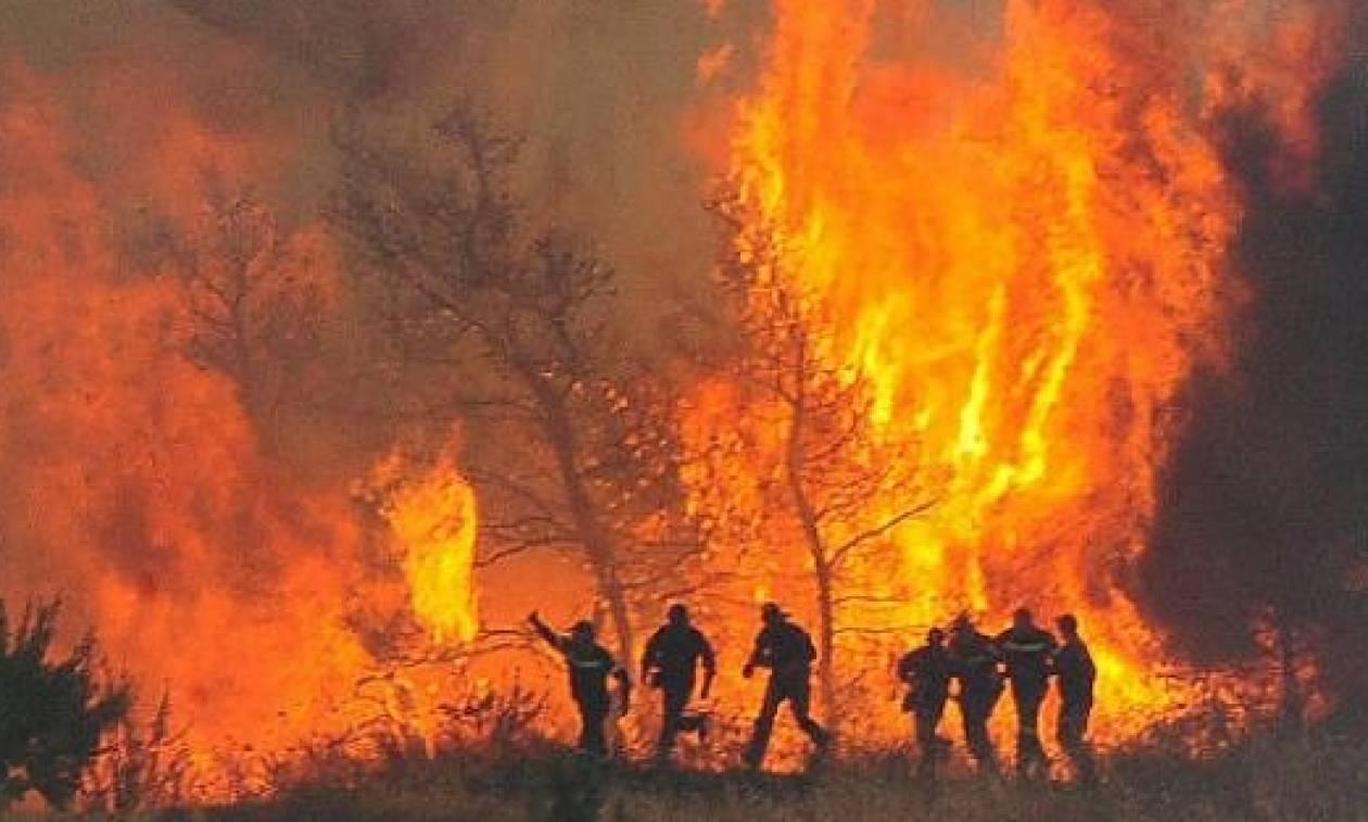 Καιρός – καύσωνας: «Γυμνή» από προσωπικό και Μέσα η Πυροσβεστική μπροστά στο «πύρινο» καλοκαίρι