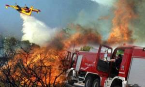 Φωτιά τώρα: Δείτε που υπάρχουν πυρκαγιές σε εξέλιξη αυτή τη στιγμή στην Ελλάδα