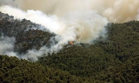 Νέα φωτιά στη Μεσσηνία: Μετά την Κορώνη, πύρινο μέτωπο και στην Άνω Μέλπεια