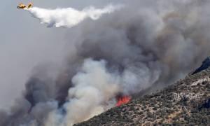 Κραυγή αγωνίας από τους πυροσβέστες: «Ο Θεός να βάλει το χέρι του...»