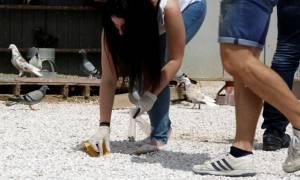 Αποκάλυψη ΣΟΚ στο Μενίδι: Είχαν πυροβολήσει ανήλικο ένα μήνα πριν το θάνατο του Μάριου