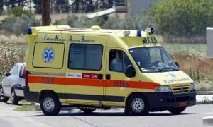 Ηλεία: 40χρονος δέχθηκε επίθεση από σφήκες – Τον έσωσαν οι γιατροί