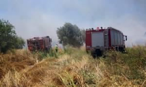 Φωτιά: Σε ύφεση η πυρκαγιά στην Κερατέα