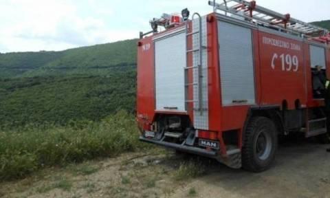 Καύσωνας: Πολύ υψηλός ο κίνδυνος πυρκαγιάς την Κυριακή (2/7) (pic)