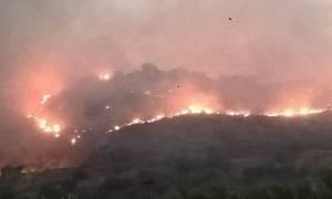 Μαίνεται η φωτιά στον Πύρριχο Λακωνίας