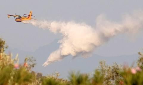 Ξέσπασε μεγάλη πυρκαγιά στην Κεφαλονιά