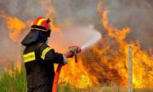 Φωτιά στην Εθνική Οδό Αθηνών – Λαμίας στο ύψος της Λυκόβρυσης