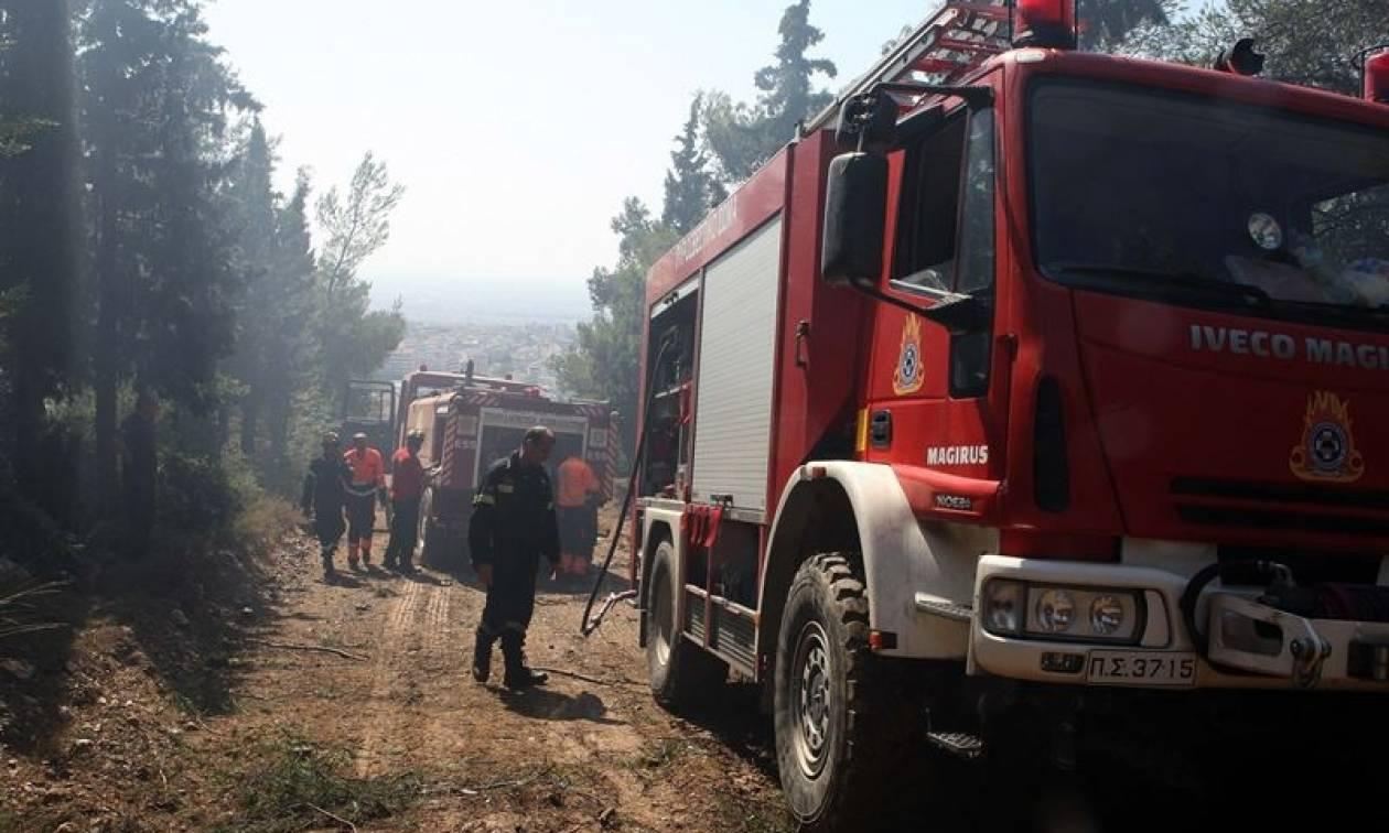 Στο «κόκκινο» ο κίνδυνος πυρκαγιάς αύριο Τρίτη (04/07) - Ποιες περιοχές κινδυνεύουν