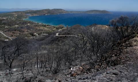Πυρκαγιές σε όλη τη χώρα: Φλέγεται η Μάνη - Σε ύφεση οι φωτιές σε Μέγαρα, Πάτρα και Χανιά